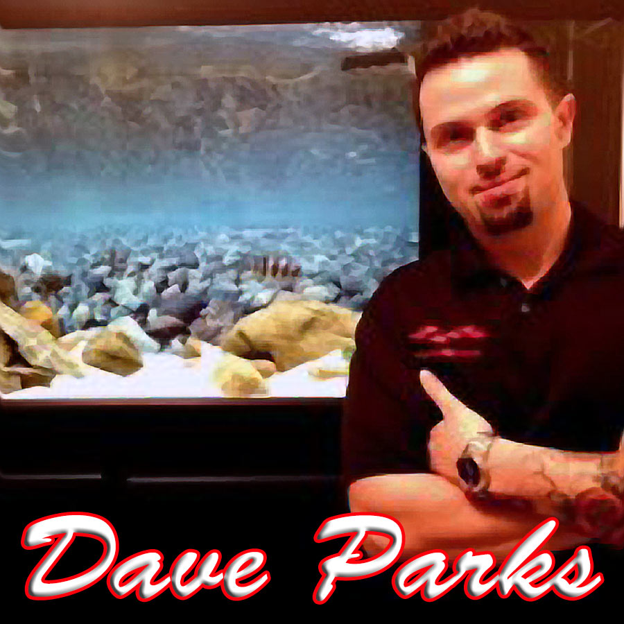 Dave Parks Photo